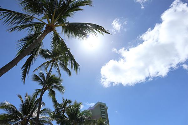 賢く存分に楽しもう 「DAY1 ハワイ」モデルプラン